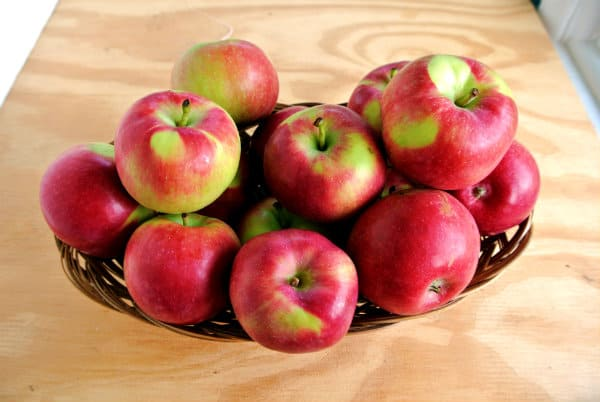 Paula Red Apples