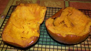 Alton Brown Pumpkin Puree 2
