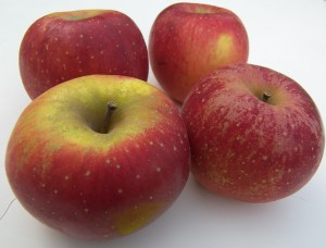 Melrose Apples