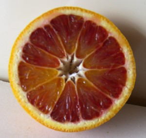 Tarocco Blood Oranges 1