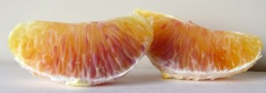 Tarocco Blood Oranges 3