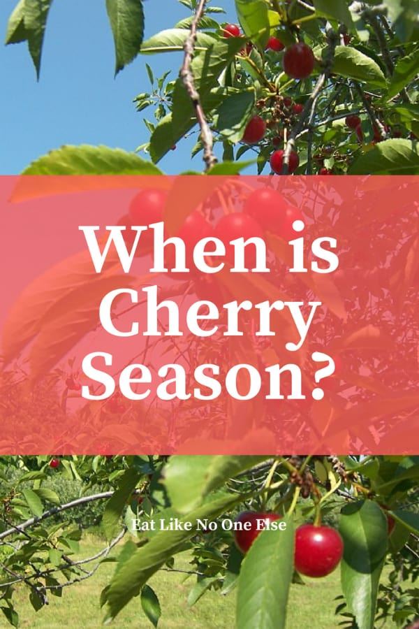 When Does Cherry Season Begin and End When are Cherries in Season?