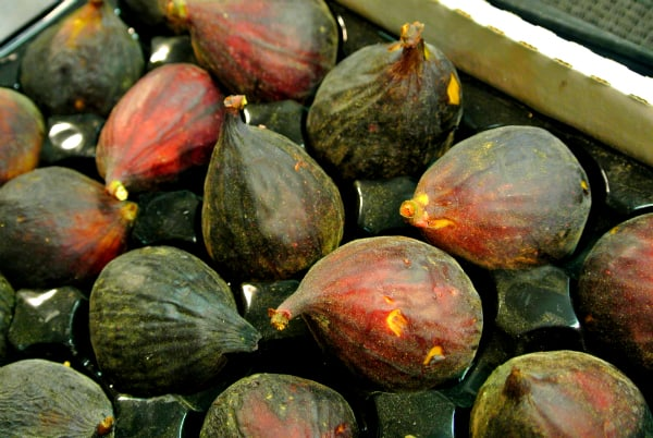 When are Fresh Figs in Season