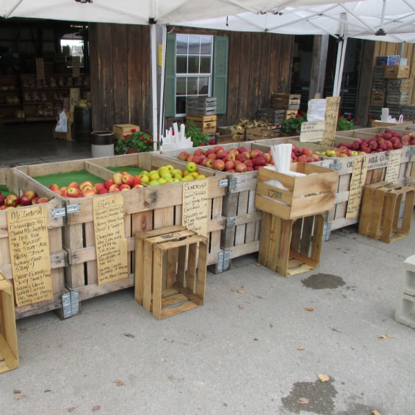Quarry Hill Orchards Apple Bins 1