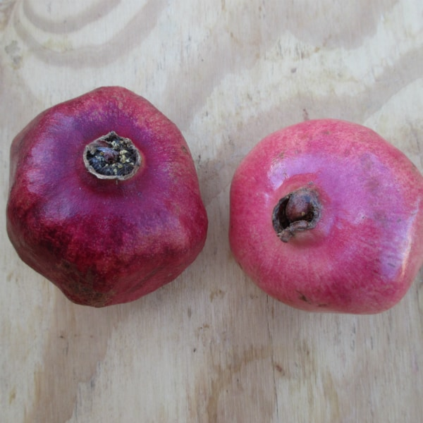 How to Tell When a Pomegranate is Ripe