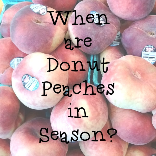 Donut Peach Season