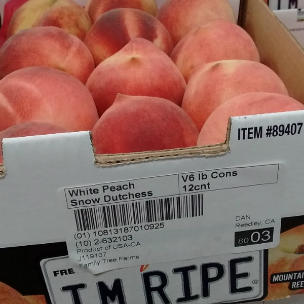 Snow Dutchess Peaches from Family Tree Farms