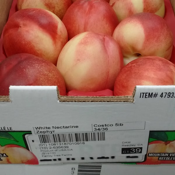 Zephyr White Nectraines from Family Tree Farms