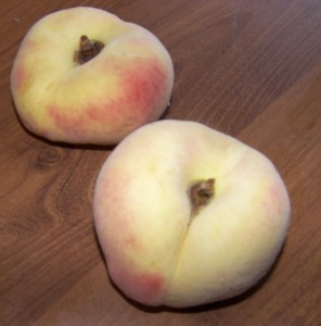 Donut (Saturn) Peaches