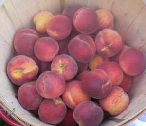 Bellaire Peaches