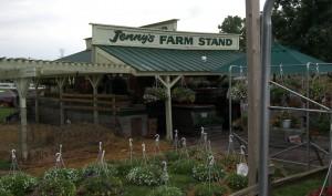 Jenny's Farm Stand 1