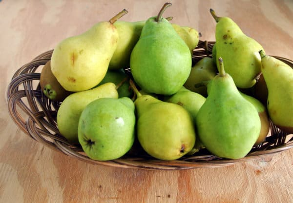 Moonglow Pears