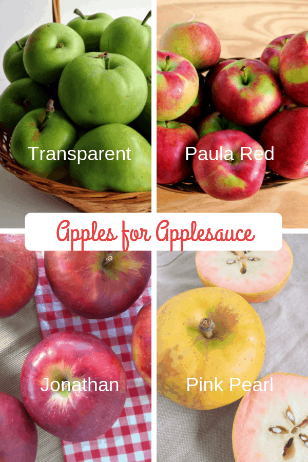 A collage of apples for applesauce, (top left) Transparent apples, (top right) Paula Red apples, (bottom left) Jonathan apples, (bottom right) Pink Pearl apples
