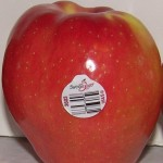 SweeTango Apples 1