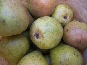 Harrow Sweet Pears