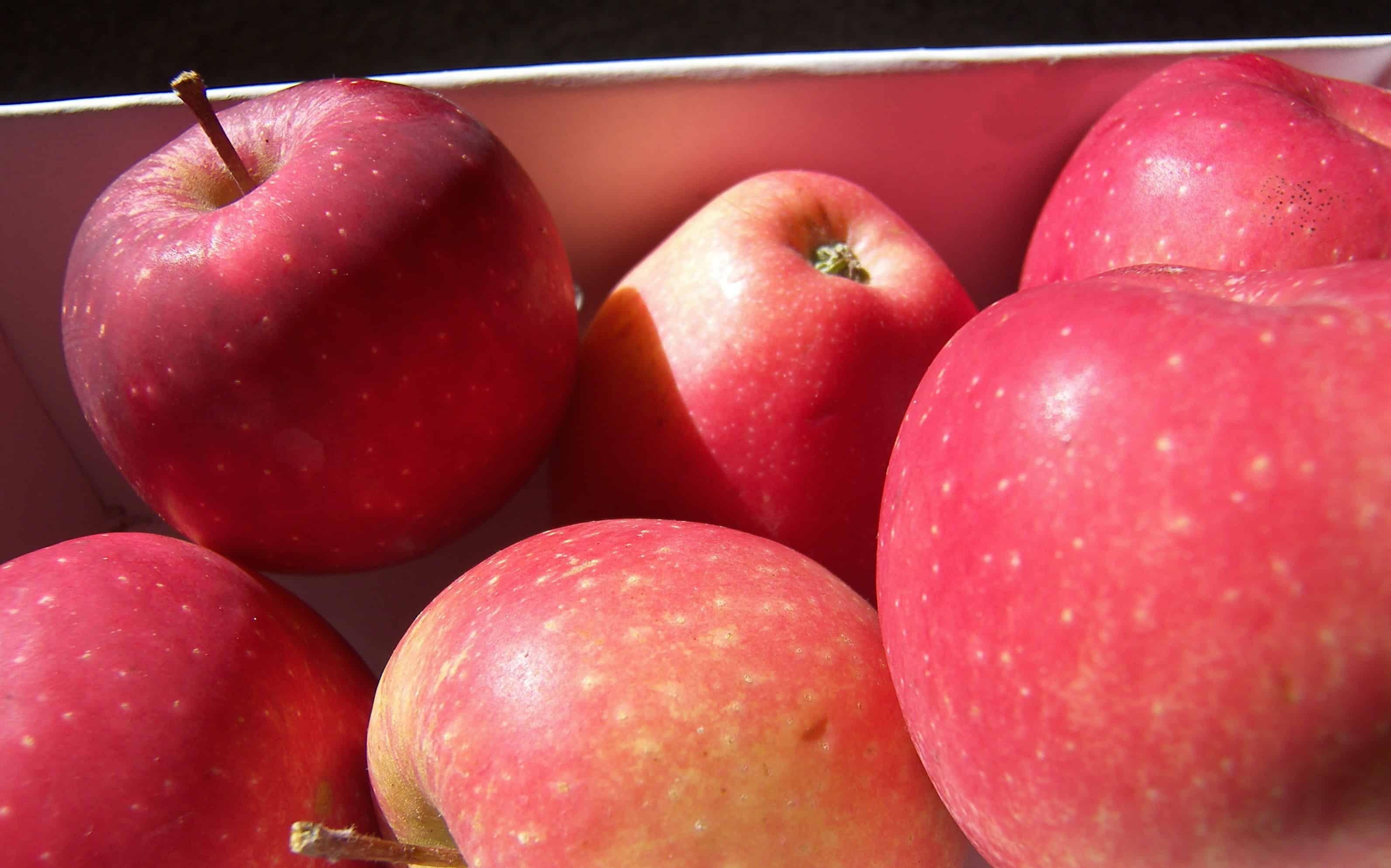 кодексы фотки яблоки делишес подруга