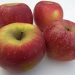 Melrose Apples