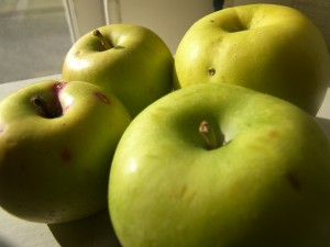 Rhode Island Greening Apples