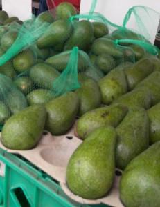 Fuerte Avocado (2)