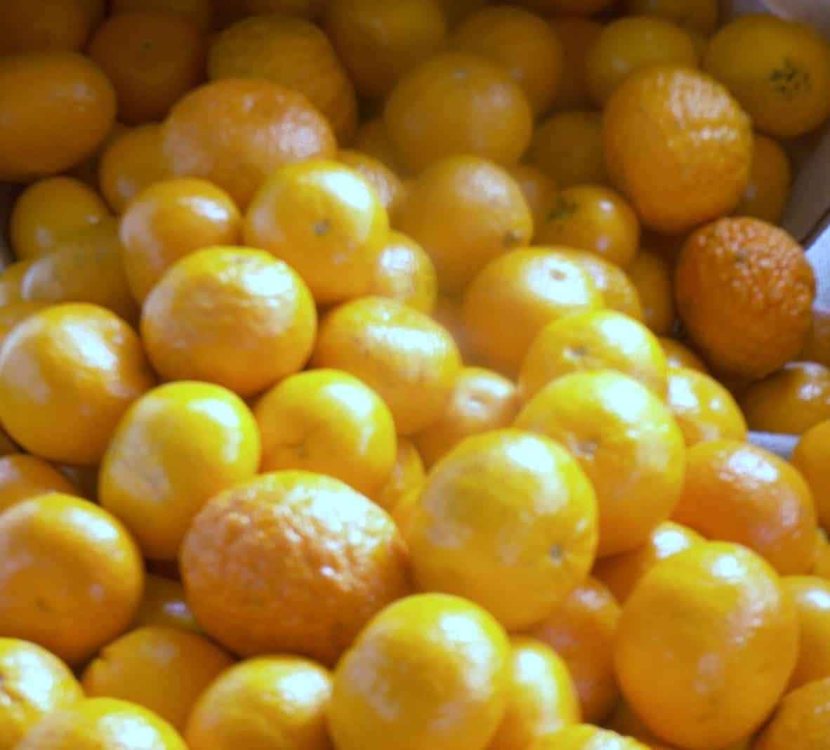 When Does Orange (and Mandarin) Season Begin (and End)?