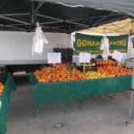 Great Park Oranges