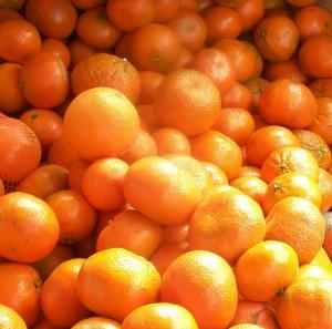 Murcott Mandarins 2