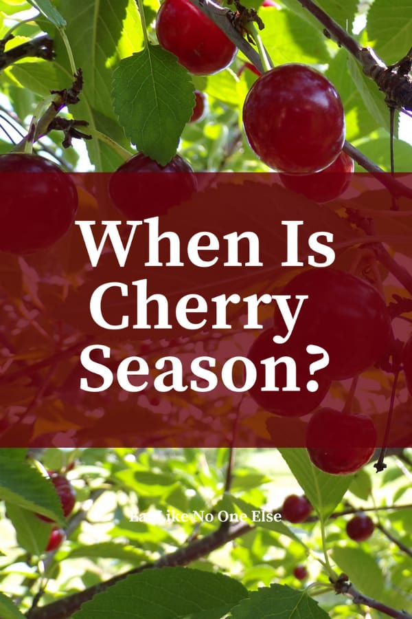 When is Cherry Season