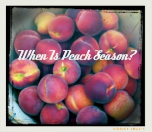 When Is Peach Season