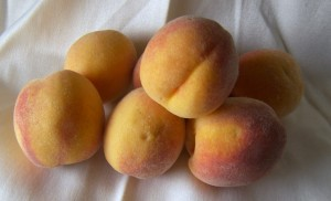 The Elberta Peach – A Peach That Started An Industry