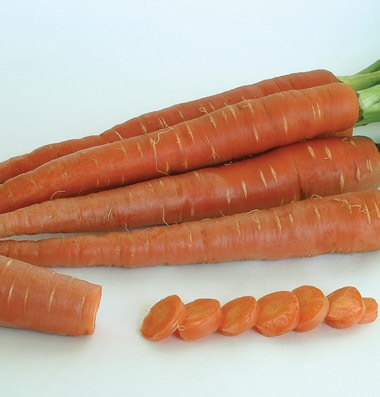where to buy different colored carrot seeds eat like no