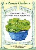 How to Grow Garden Babies Butterhead Lettuce (Container)