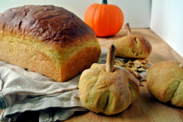 Pumpkin Yeast Bread Rolls
