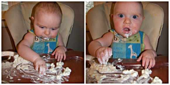 Cottage Cheese For Baby   Food For Our Brood Teaching Independence And  Motor Skills At