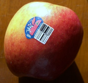 A Jazz apple with the old PLU sticker on it