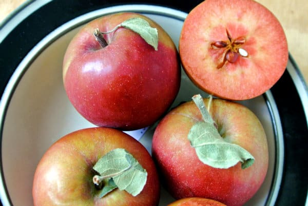 Almata Apples