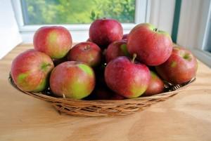 Jersey Mac Apples