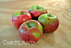 Where Can I Buy Organic Heirloom Apples?
