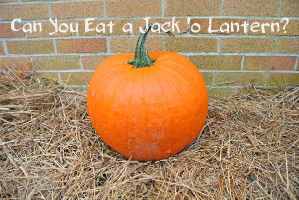 Can You Eat Your Jack 'o Lantern Pumpkin?