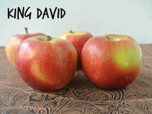 King David Apples
