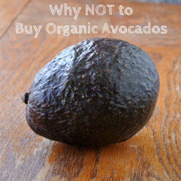 No Organic Avocado