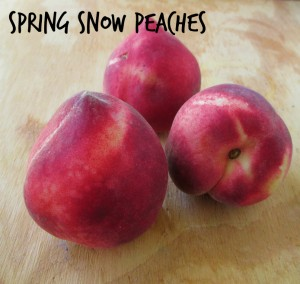 Spring Snow Peaches