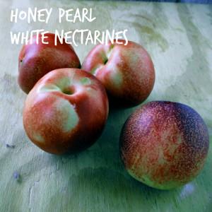 Honey Pearl White Nectarines