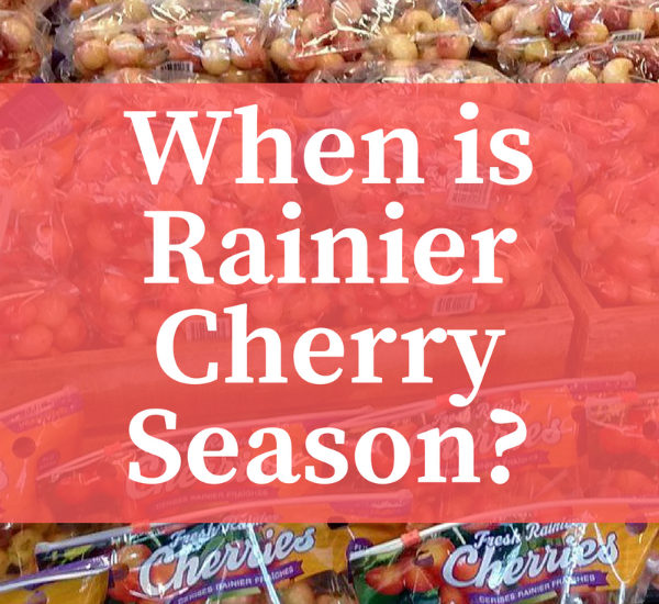 When are Rainier Cherries in Season