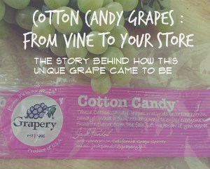 Cotton Candy Grapes From Vine to Your Store