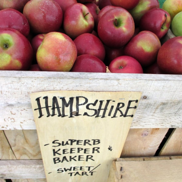 Hampshire Apples