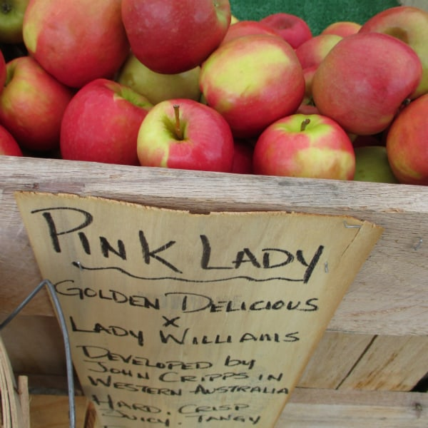"""A bin of Pink lady apples with a sign on the front that says """"Pink Lady - Golden Delicious X Lady Williams. Developed by John Cripps in Western Australia. Hard, Crisp, Juicy, Tangy."""