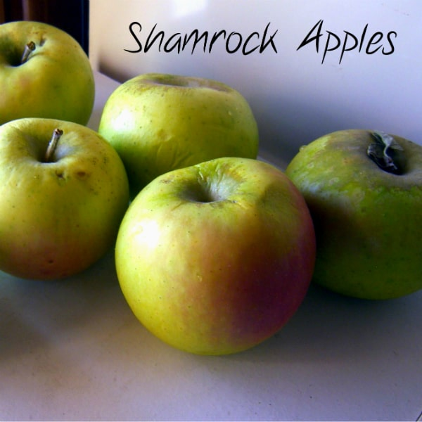 Shamrock Apples