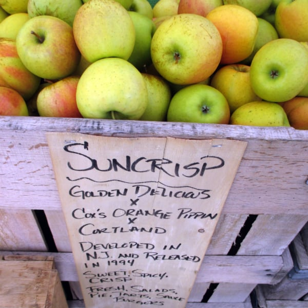 Suncrisp Apples