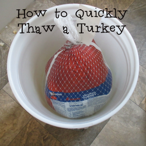 How to Quickly Thaw a Turkey