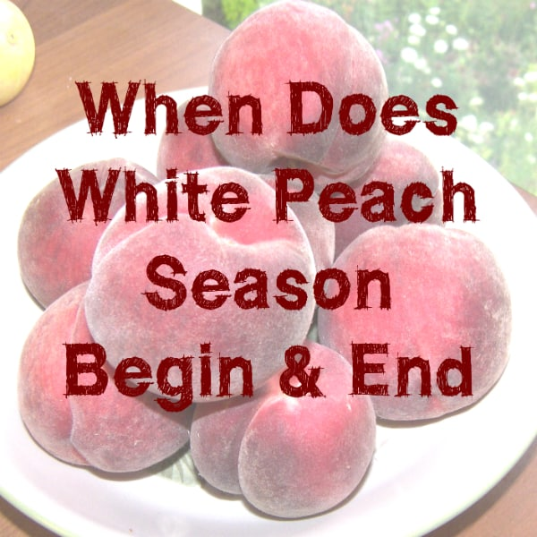 When Does White Peach Season Begin (and End)?